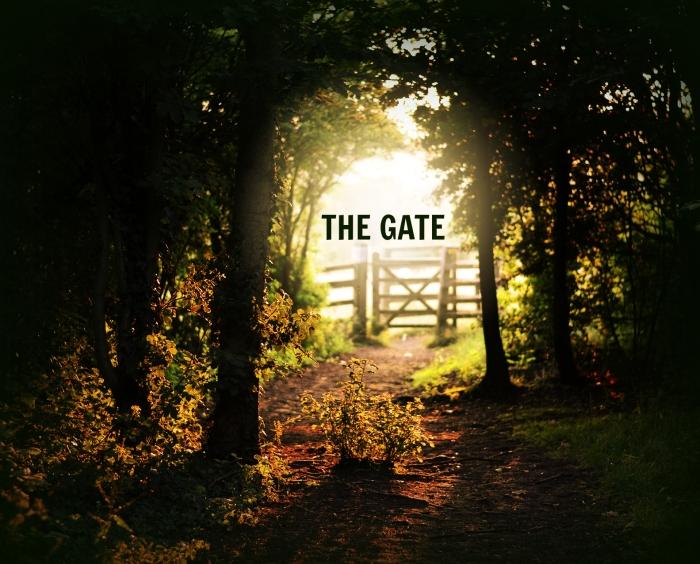 Gate Edit