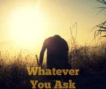 Whatever You Ask