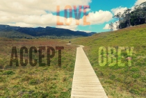 accept obey