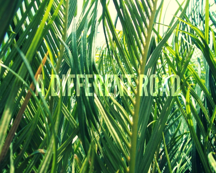 Different Road