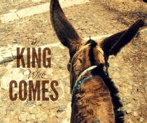 The King Who Comes