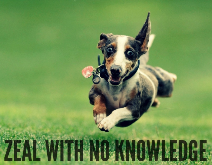 zeal with no knowledge