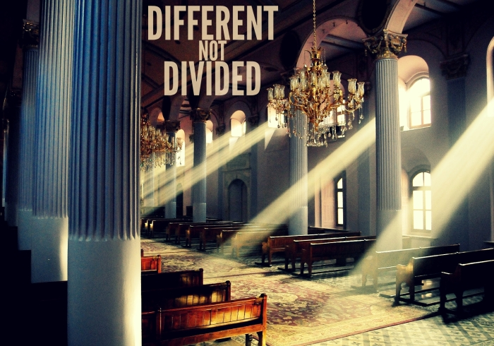 differentnotdivided