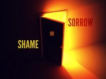 shameorsorrow