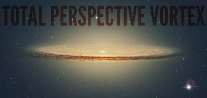 total perspective vortextrw