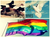 ravens doves and rainbows