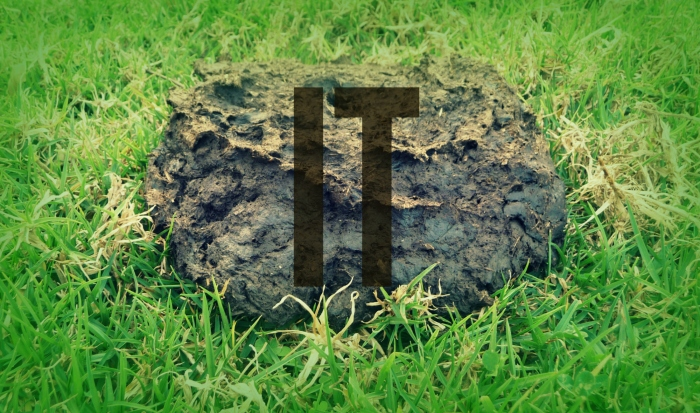 it-trw