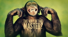 the-way-of-the-master